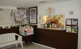 Dog boarding and pet grooming lobby