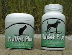 Pet care! Your Pet's Best Friend Get your pet healthy - Keep your pet healthy!
