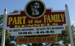 Welcome to POTFK dog boarding and grooming!